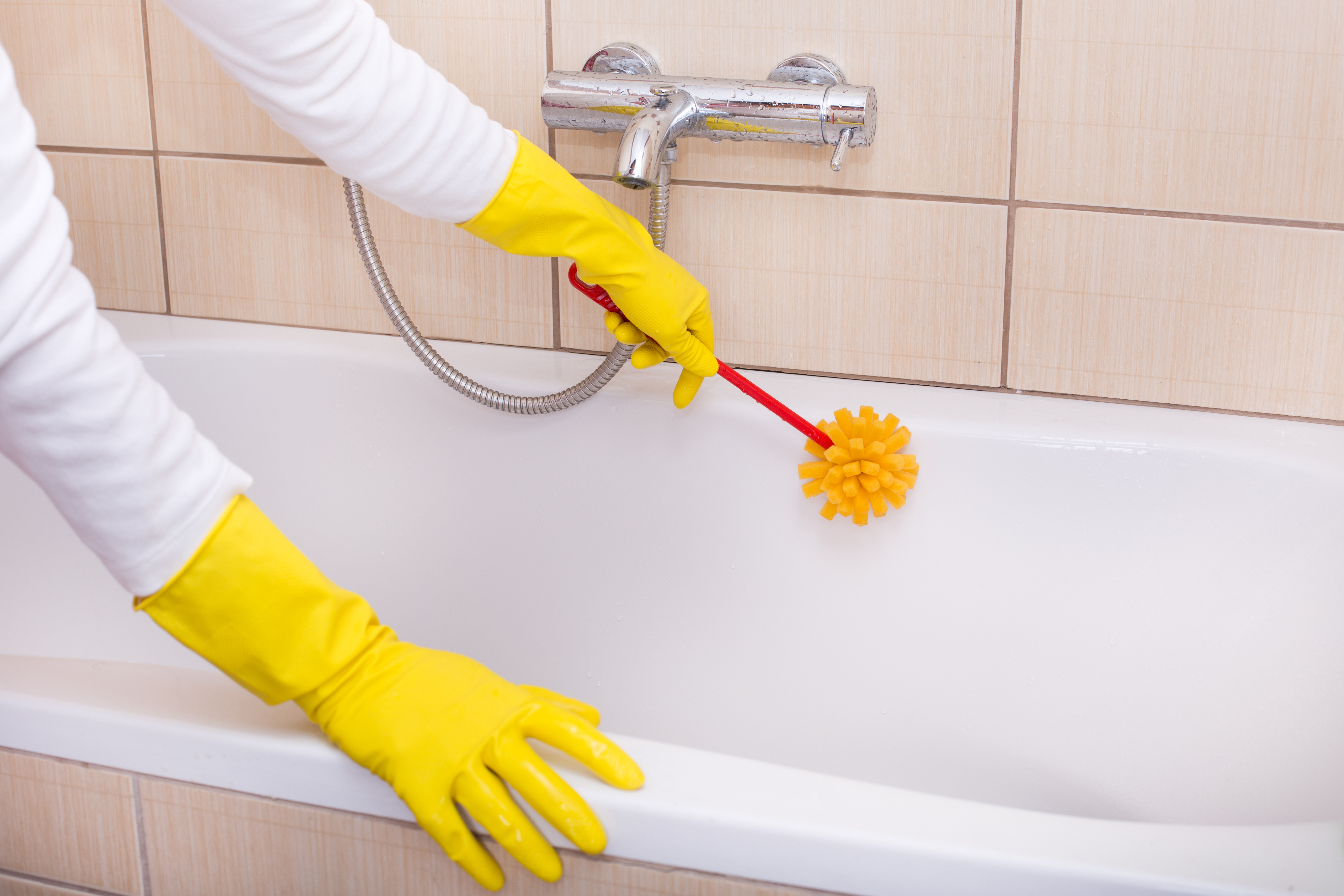 Close up of female hands cleaning bathtub with sponge brush