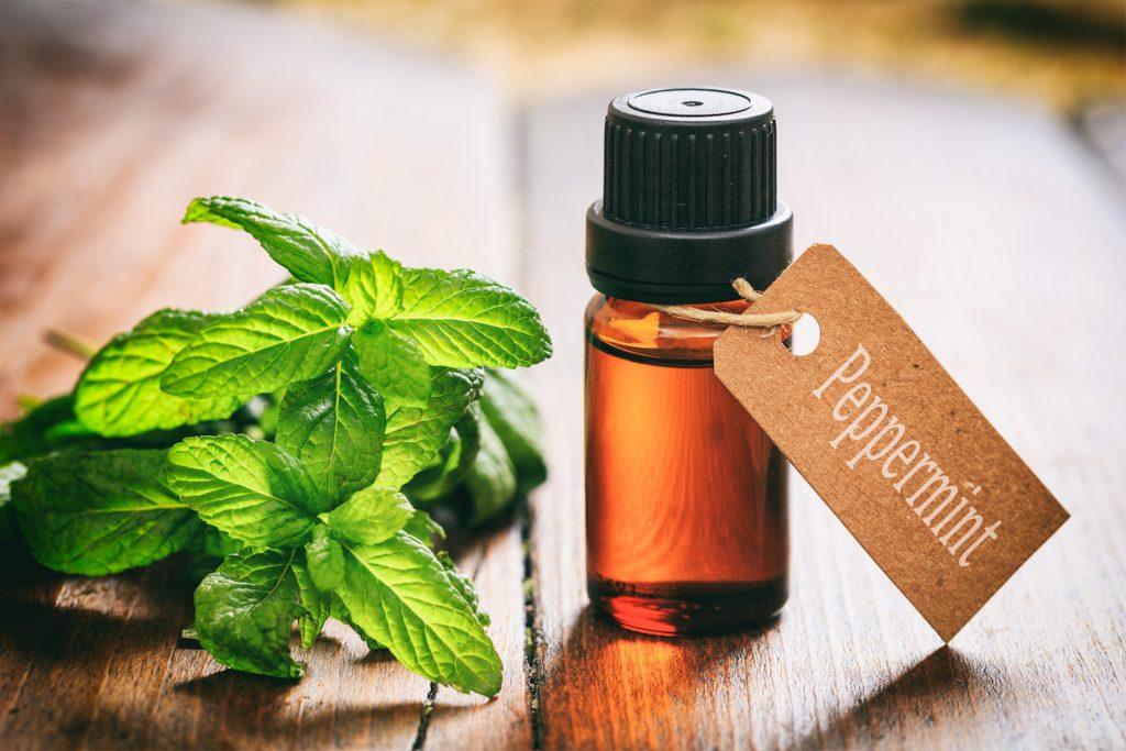 A bottle of peppermint oil