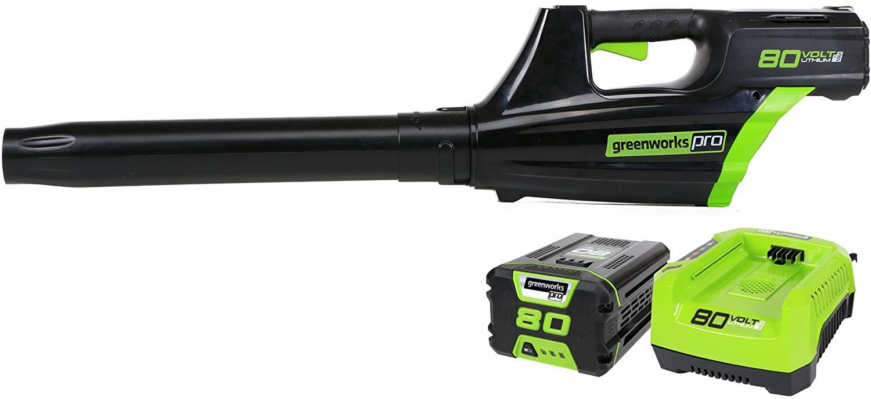 Pro version of Greenwork's leaf blower