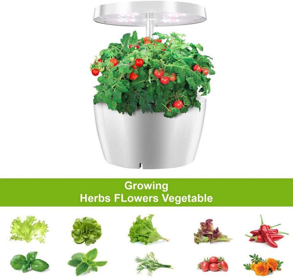 ANZQHUWAI Plant Cultivation Pot Herb Garden Kit