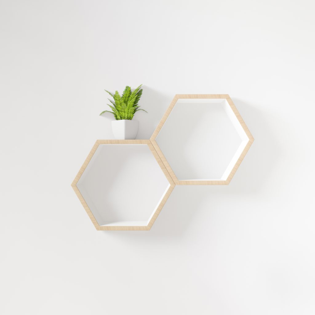 Hexagon shelf with little tree copy space,copy space,mock up,hexegon