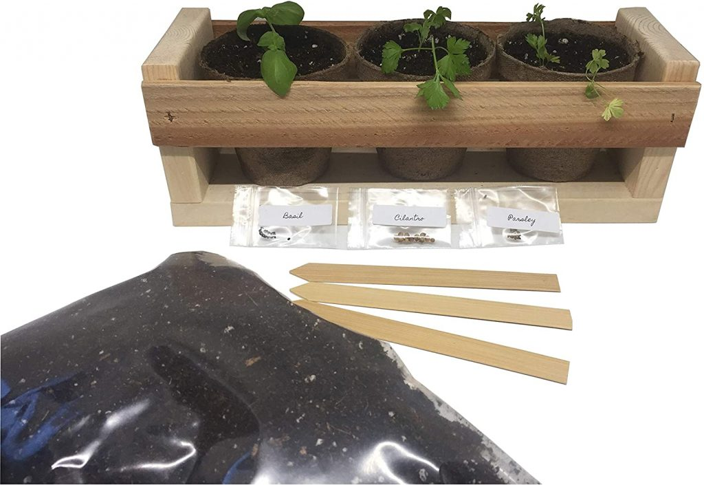 BackyardCedars Herb Garden Starter Kit
