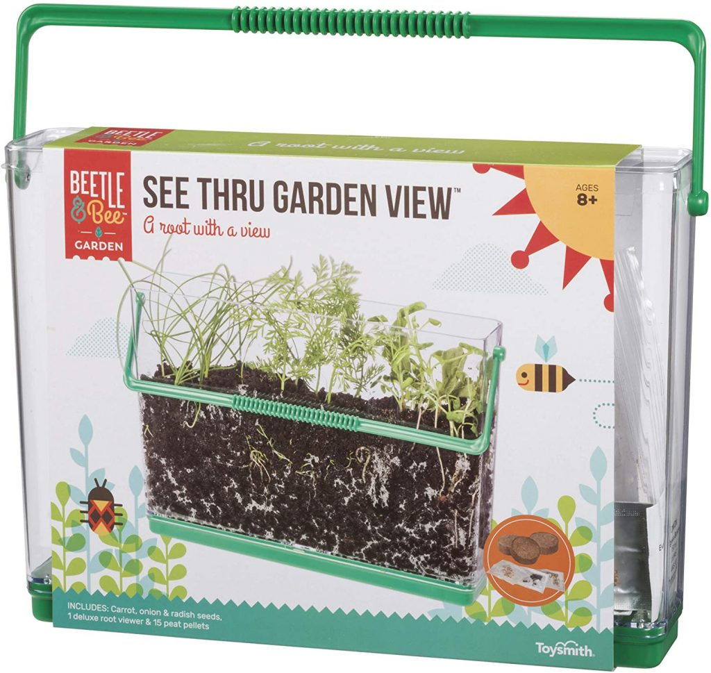 Bettle and Bee See Thru Garden
