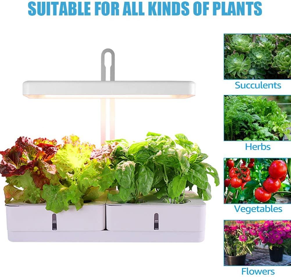CRZJ Indoor Garden Kit