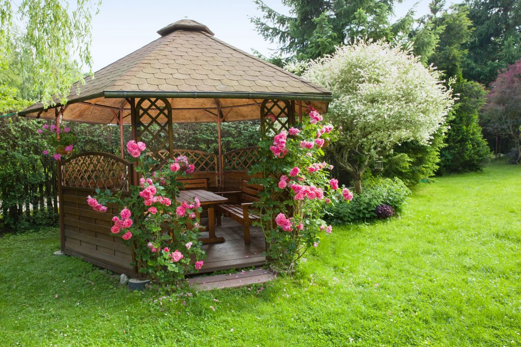 Outdoor wooden gazebo with roses and summer landscape background