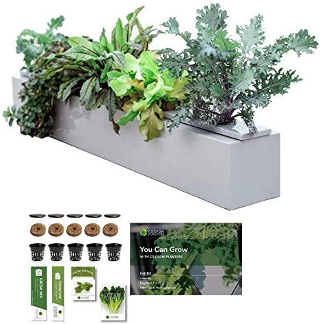 Go Grow Hydroponic Planter System