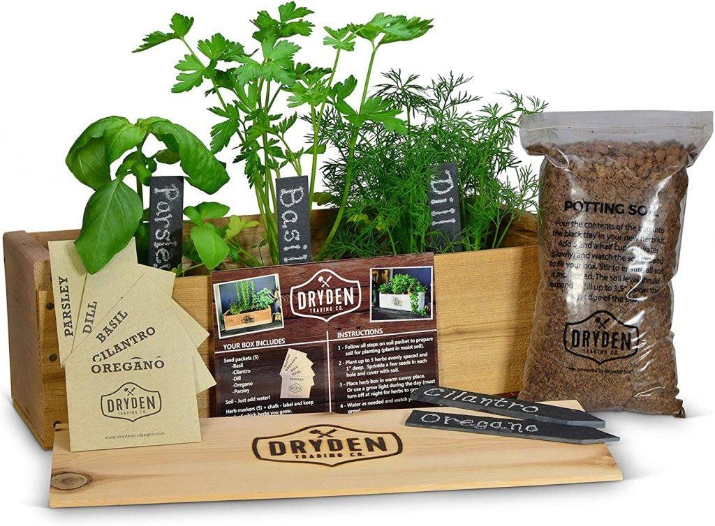 Indoor Outdoor Herb Garden Kit