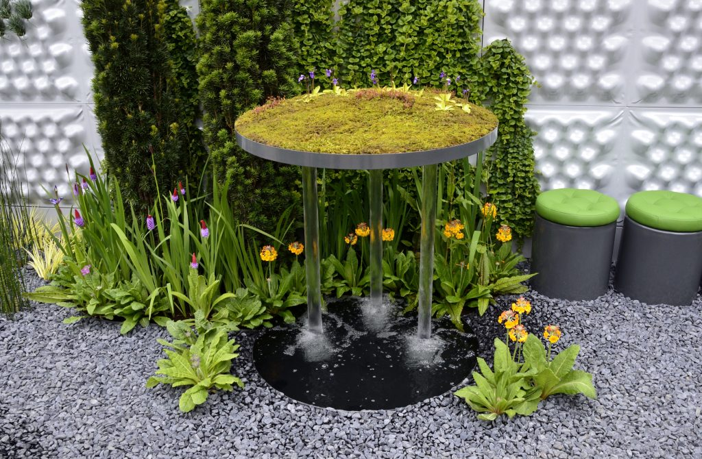 A floating garden of moss and carnivorous plants and recycling water