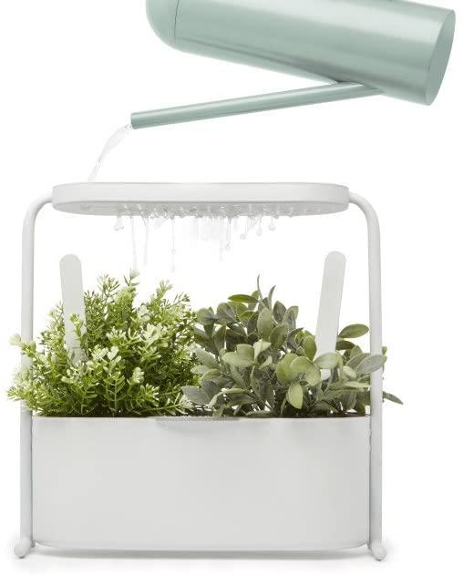 Umbra Giardino Indoor Herb Garden Set