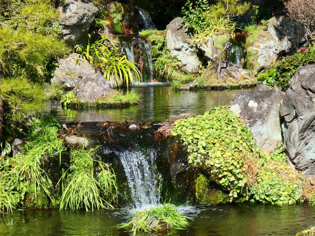japanese classy landscape garden