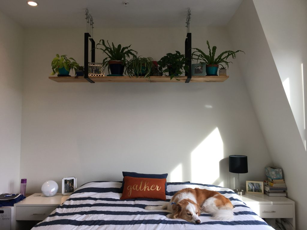 diy ceiling shelf
