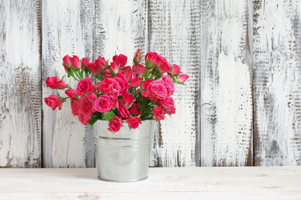 Bouquet of crimson roses in bucket