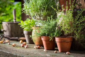 50 Quick And Easy Herb Garden Ideas