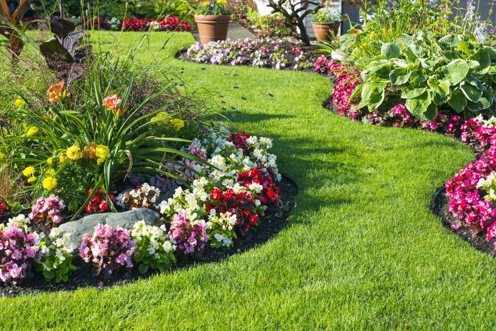Beautiful home garden in full bloom