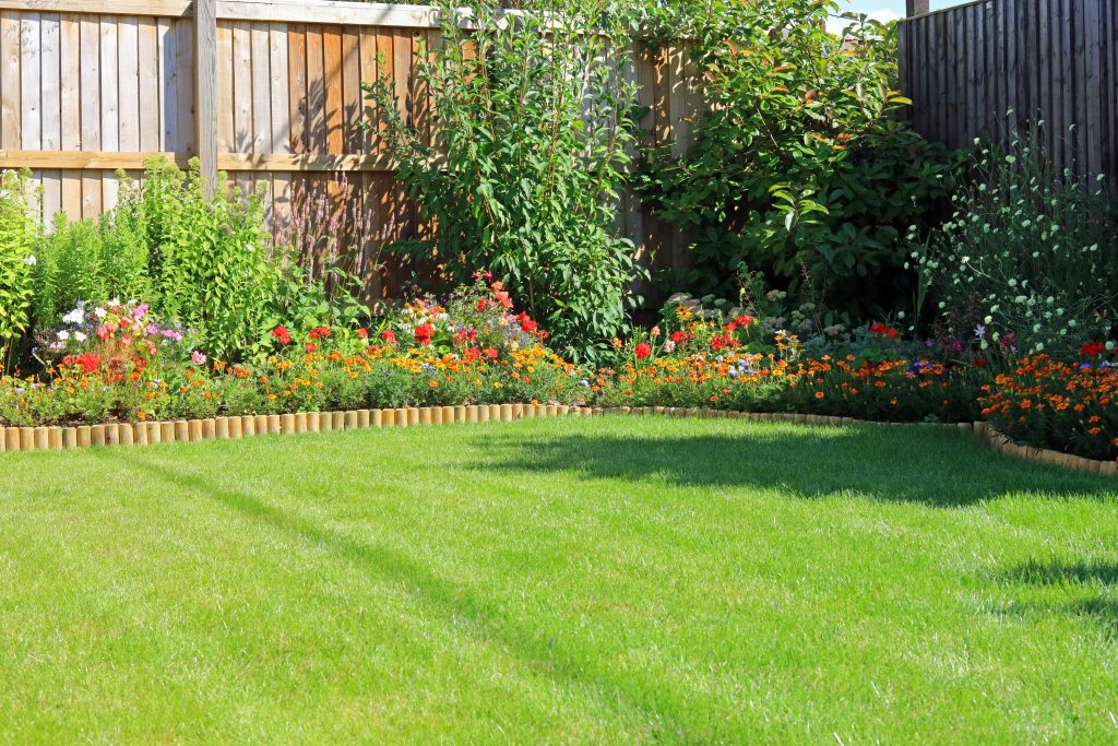 Summer Flower Borders Surrounding A Grass Lawn In An Enclosed Home Garden.