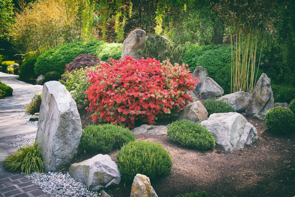 japanese garden with big stones and pavement, chinese garden in summer