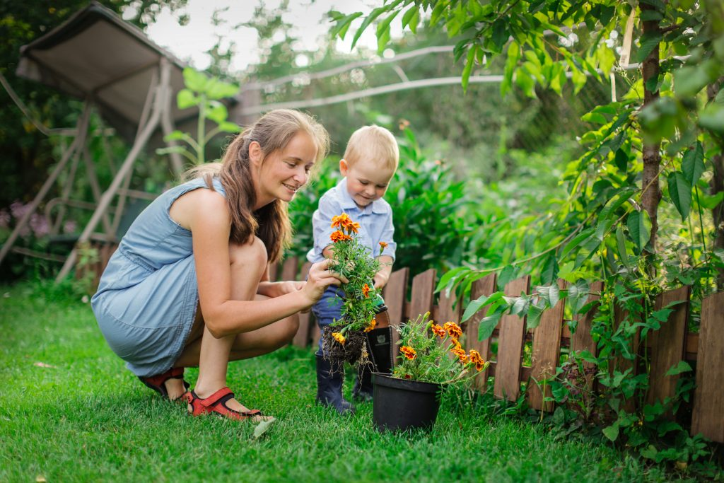 Caucasian mom and son transplant flowers in garden