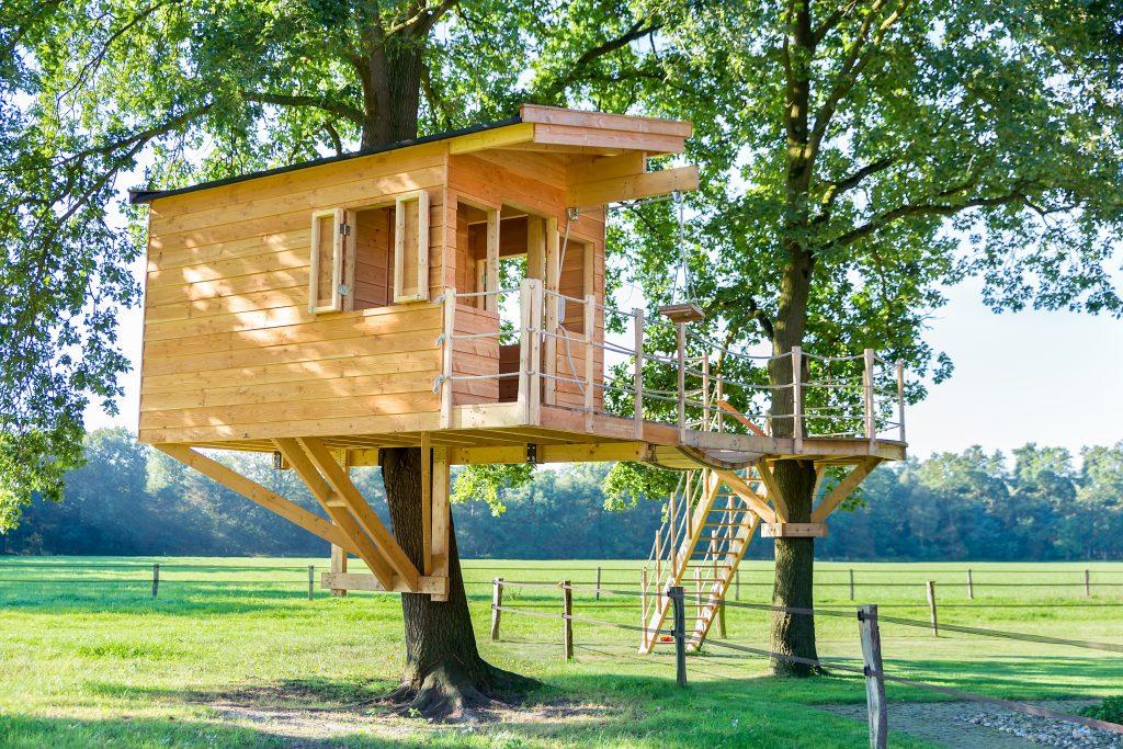 New wooden tree house in oak trees