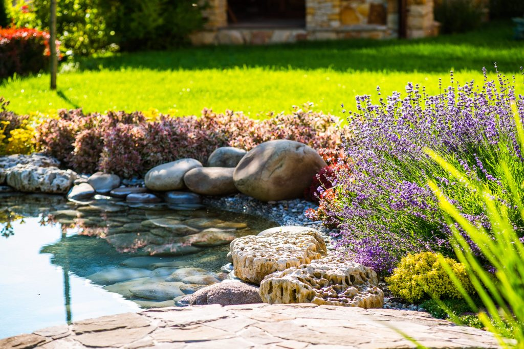 Beautiful backyard landscape design. View of colorful trees and decorative trimmed bushes  rocks