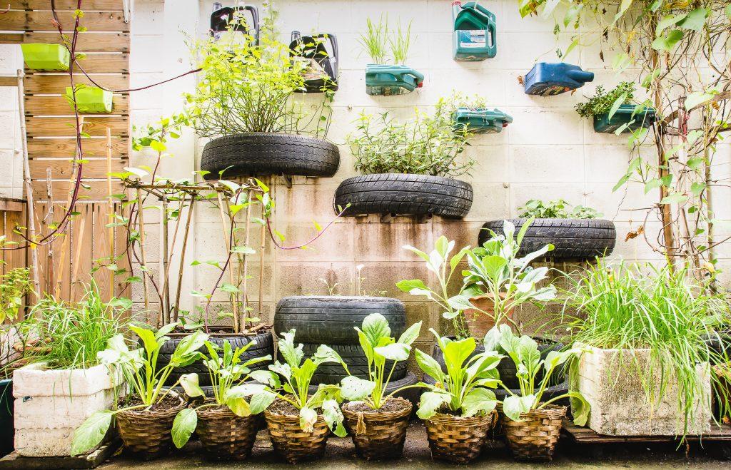 urben garden idea