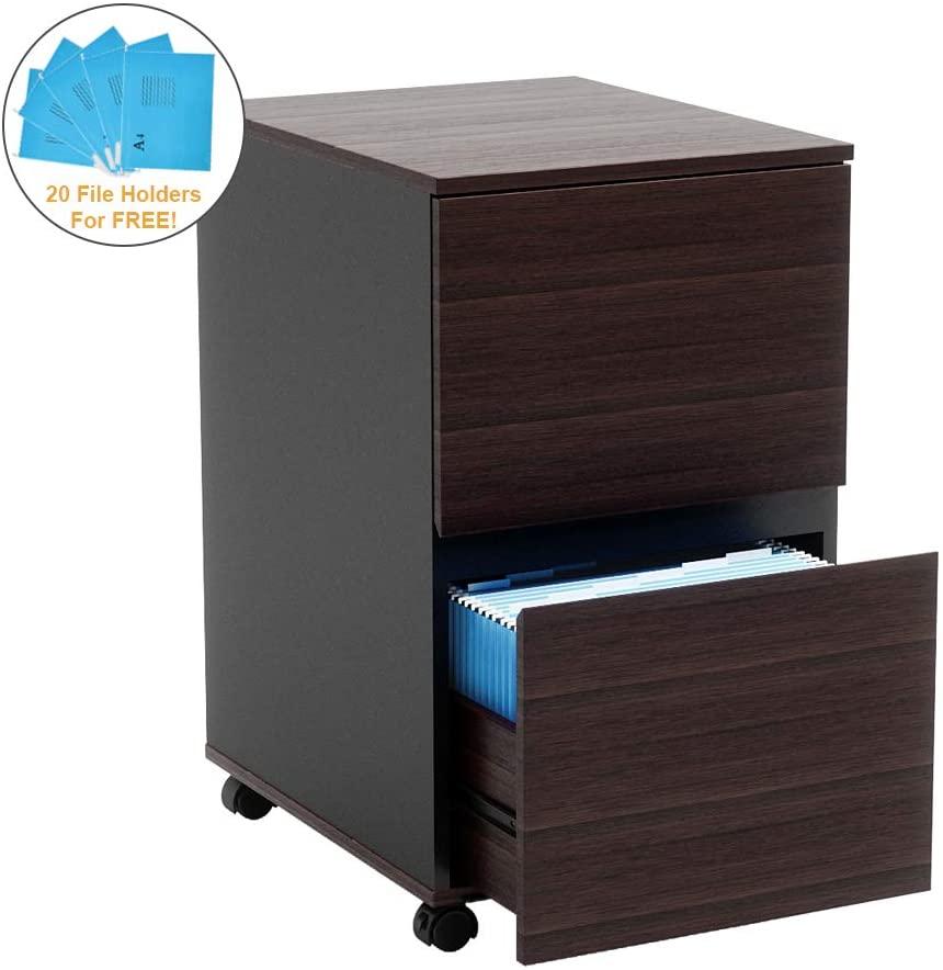Bestier 2 Drawer File Cabinet