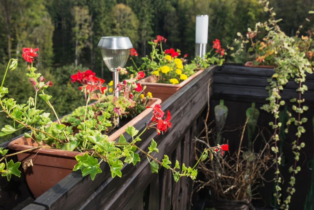 Flowerpot full of flowers and decorative lamp on the wooden railing