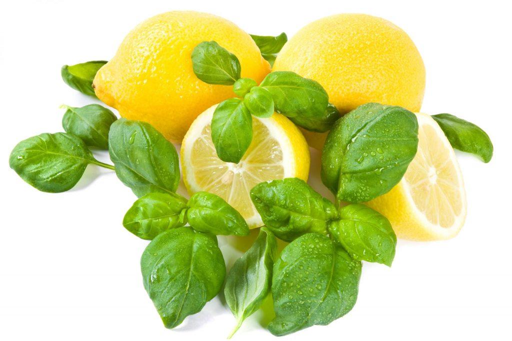 Lemon Basil Natural Air Freshener Spray