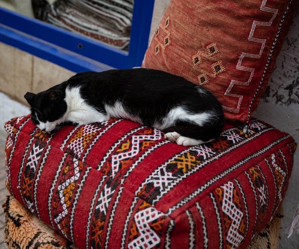 Ottomans & Scatter Pillows
