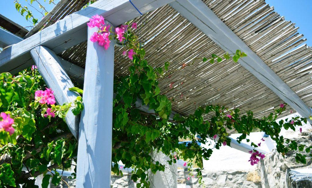 beautiful garden pergola
