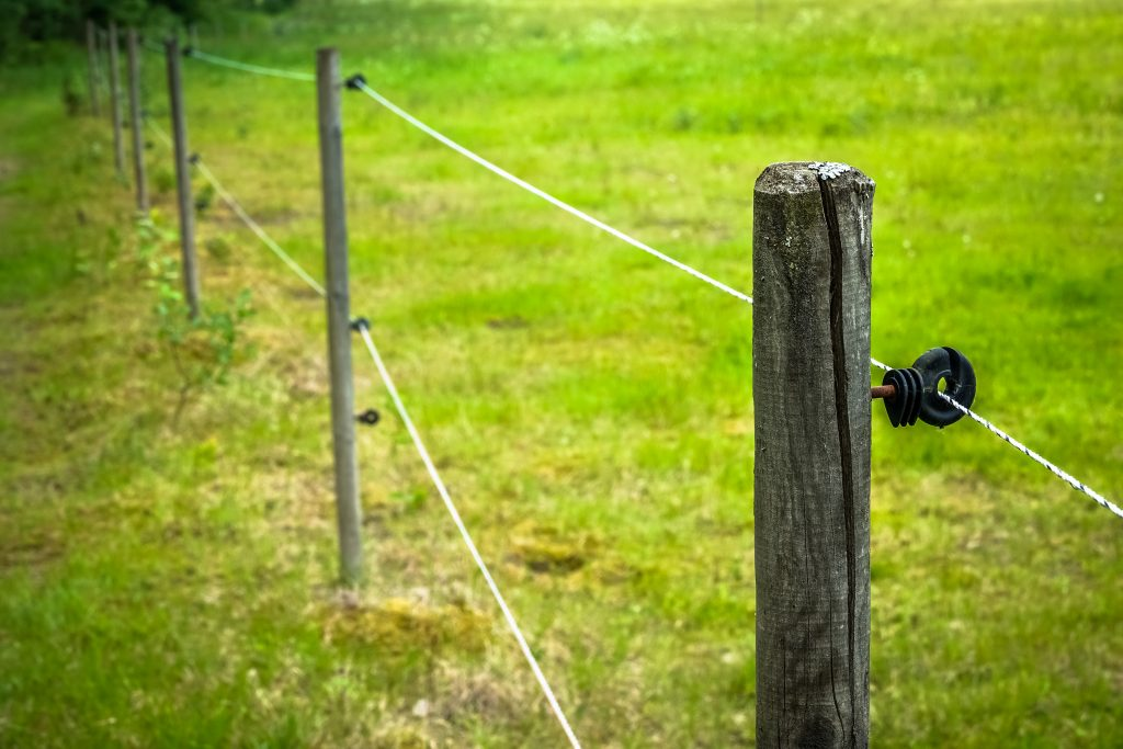 Electric fence around farm  / horse paddock