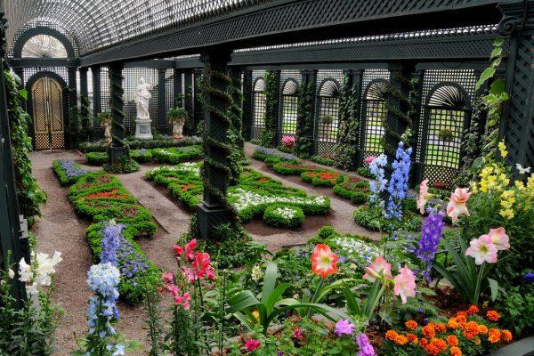 10 Ways To Grow Your Very Own Indoor Garden
