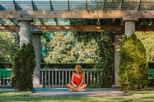 Pergolas To Make Your Outdoor Space More Vibrant