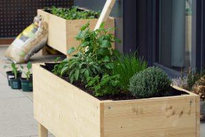 80 Best Raised Garden Bed Ideas For Any Season