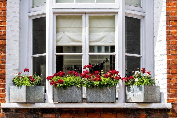 35 Gorgeous Window Boxes That Really Work