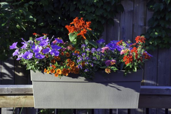 25 Best Railing Planters For A Slice Of Nature
