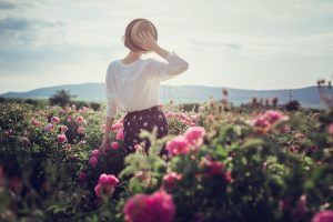 20 Fragrant Roses To Create A Natural Perfume Garden