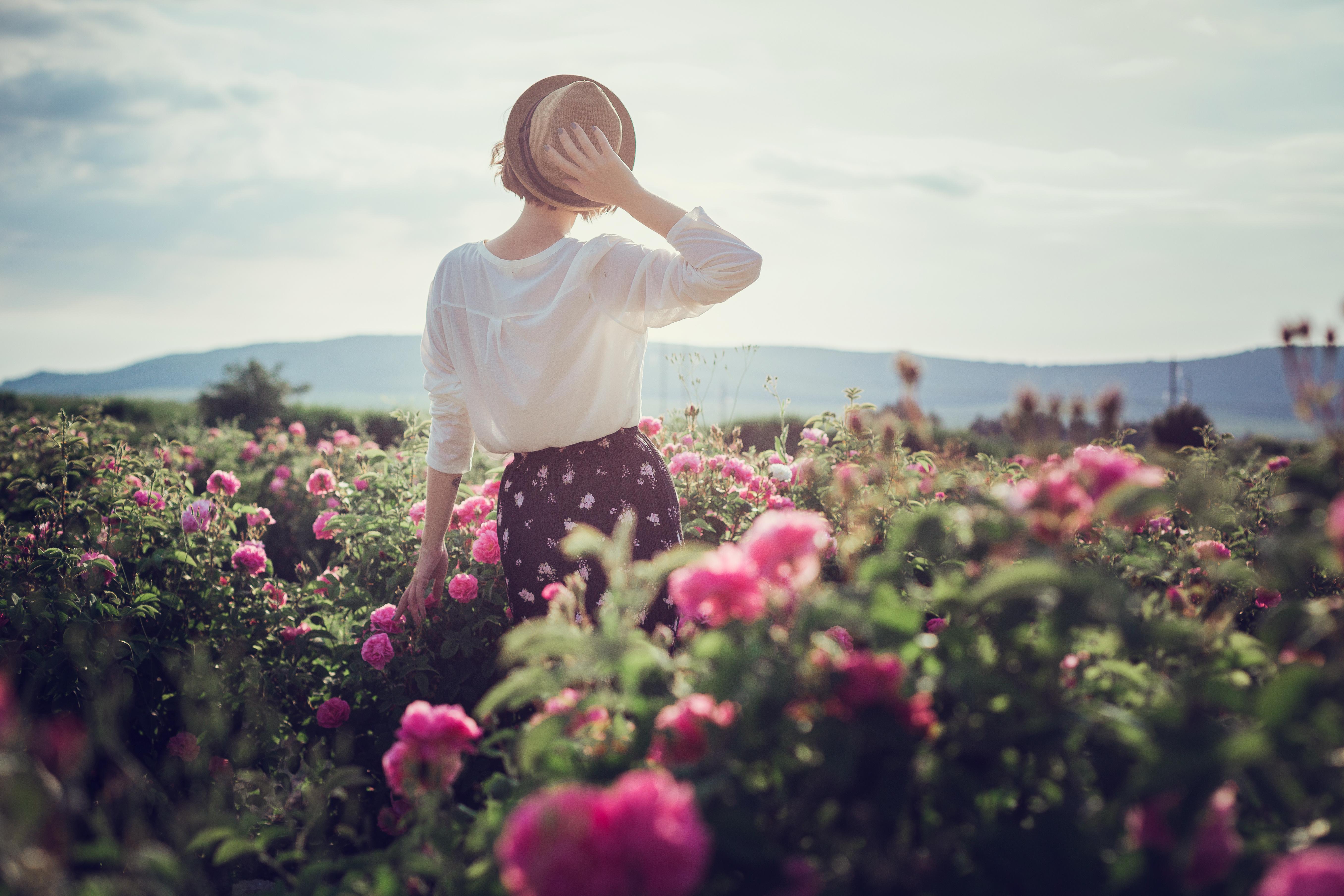 balck baccara roses